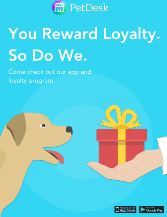 Dale Mabry Animal Hospital Tampa Fl Vet Appointments Boarding Happy Paws Rewards Program And Other Rebates