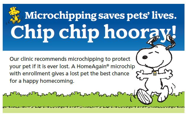 Tampa Pet Microchipping